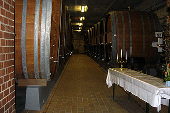 Wooden barrels for the red wine