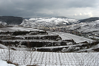 Winter in the Kaiserstuhl hills